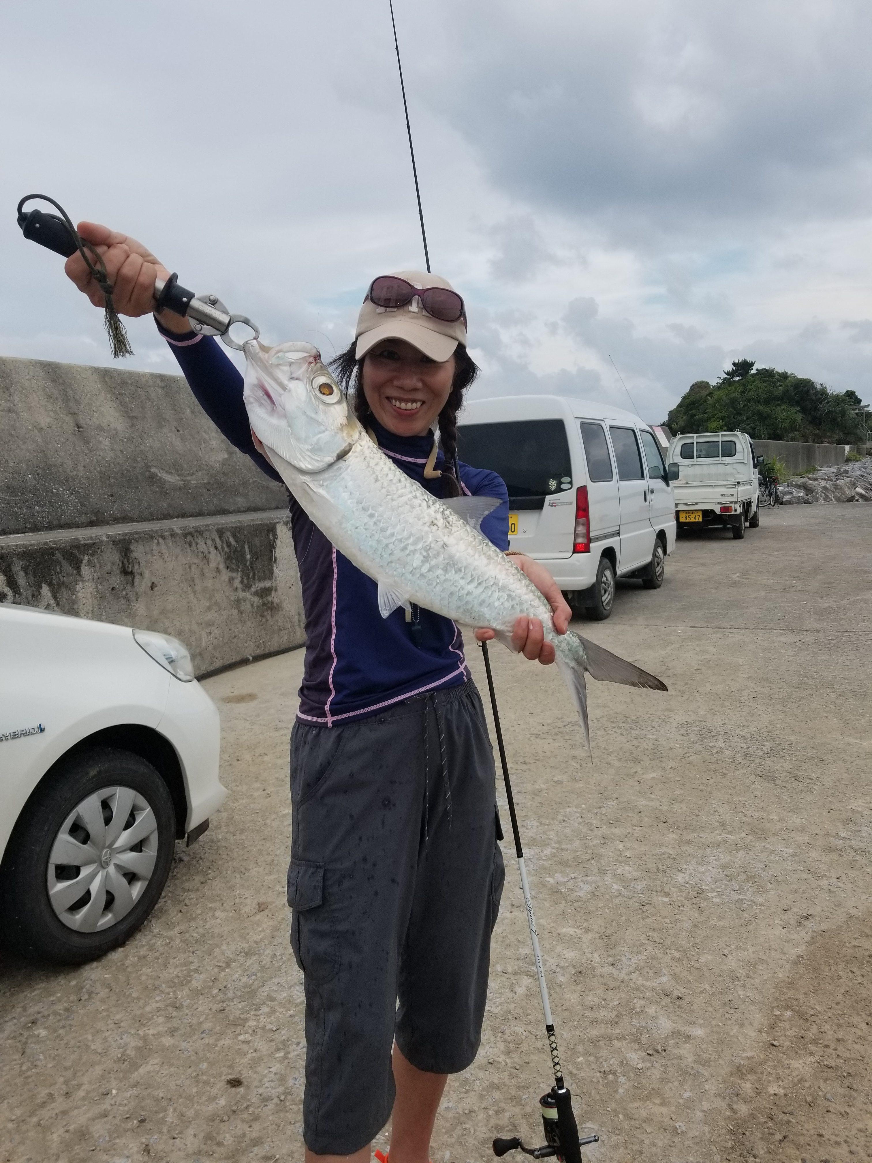 2018沖縄:漁港で泳がせ編 ターポンの釣れる海!
