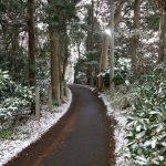 三連休初日の大雪 車の雪にはスクイージー!