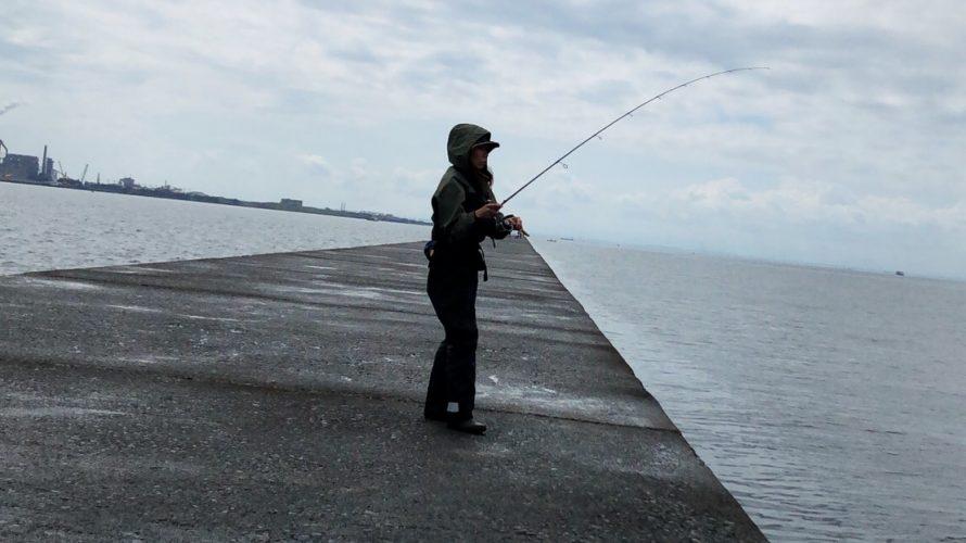 木更津防波堤へ渡ってのシロギス釣り ちゅっちゅちゅ♡