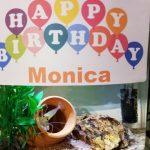 Happy Birthday Monica! テナガエビのモニカ 飼育1年経ちました!