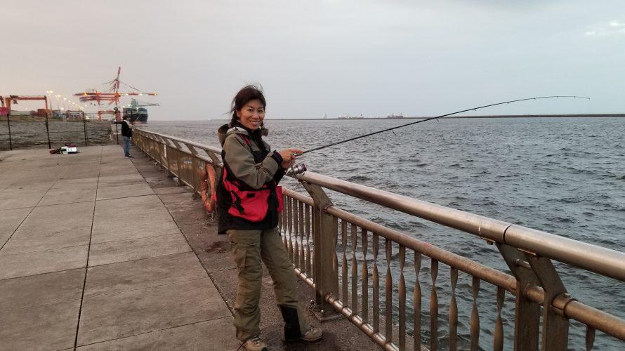 東京湾マダコ当たり年?! 川崎東扇島西公園で暗くなるまでタコ釣り!